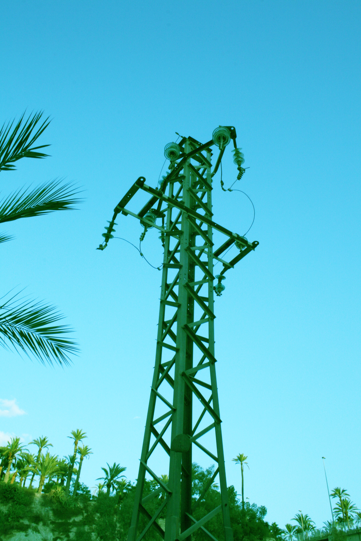 La palmera quasielèctrica